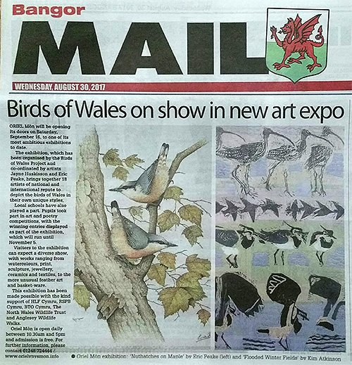 Birds_of_Wales_publicity_newspapers