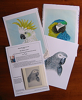 Print with Card Group in package